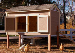 1363037611 Chicken Coop Items